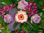 Super oferta pracy w Holandii przy kwiatach